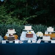 Asheville_Weddings_at_the_Arboretum_0138