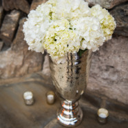 elegant_grove_park_inn_asheville_wedding_6
